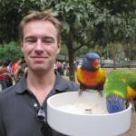 Papageienfütterung ist ein recht lautes Spektakel...