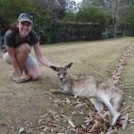Känguruhs sind wie Katzen - hinter den Ohren kraulen ist Trumpf!