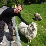 """Jackpot! """"This one is a pet sheep, you can touch it"""" our host told us after we told him, that Kiwi sheeps are quite difficult to catch ;-)"""