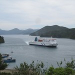 Our ferry arriving in Picton