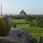 Bagan t emples - View on Thatbyinyu with a nice drink