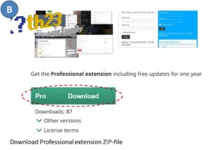 Upgrade to Professional version - step B