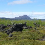Rough lava landscape, with vegetation claiming back its territory